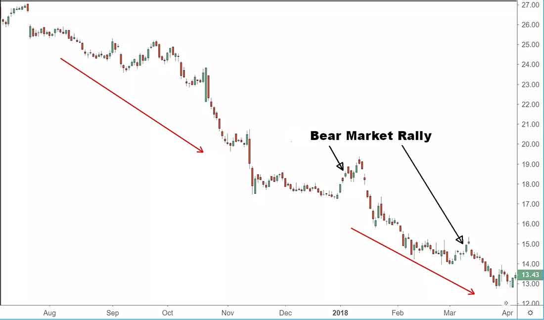Ралли медвежьего рынка